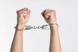 Как в судах разрешаются спорные вопросы по отзывам
